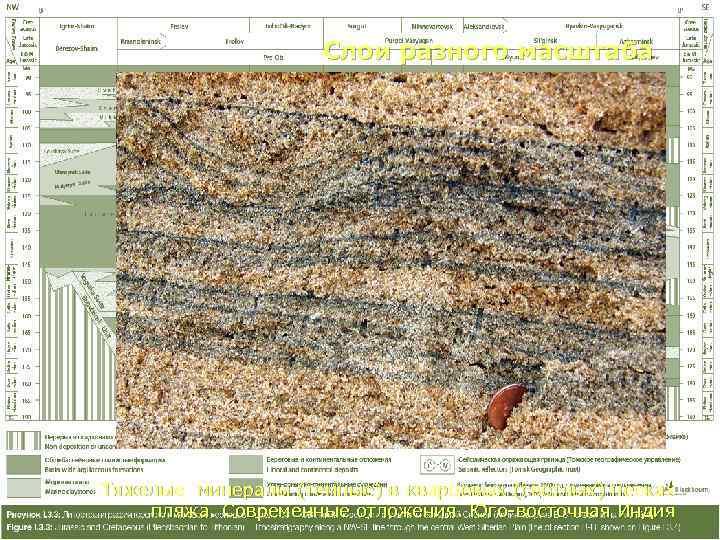 Слои разного масштаба Тяжелые минералы (темные) в кварцевых (светлых) песках