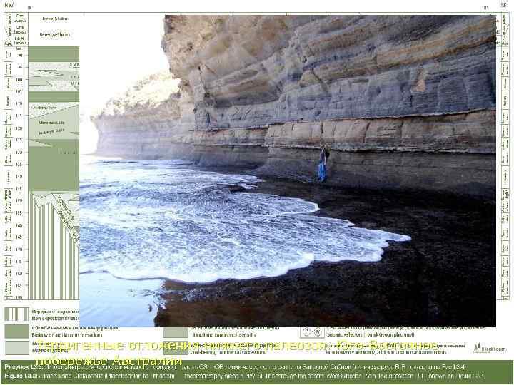 Терригенные отложения нижнего палеозоя. Юго-Восточное побережье Австралии