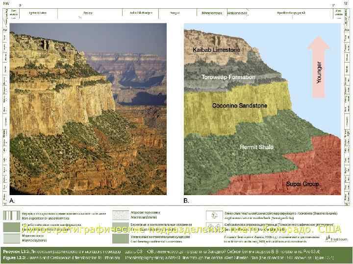 Литостратиграфические подразделения плато Колорадо. США      подразделения плато Колорадо. США