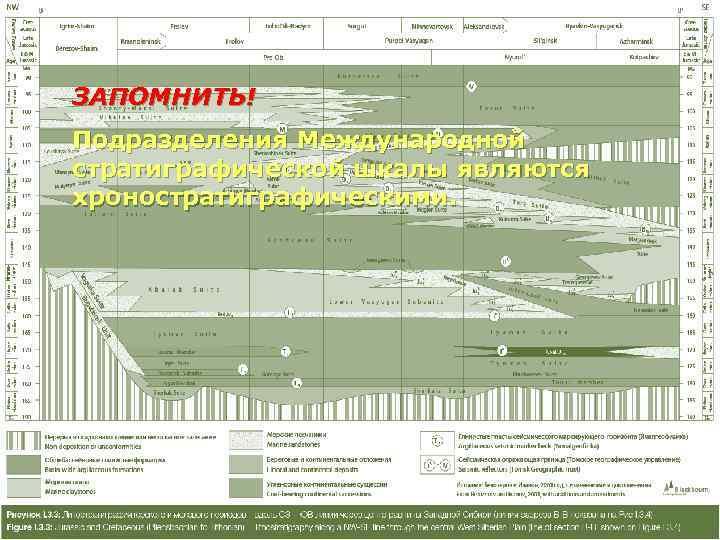 ЗАПОМНИТЬ! Подразделения Международной стратиграфической шкалы являются хроностратиграфическими.