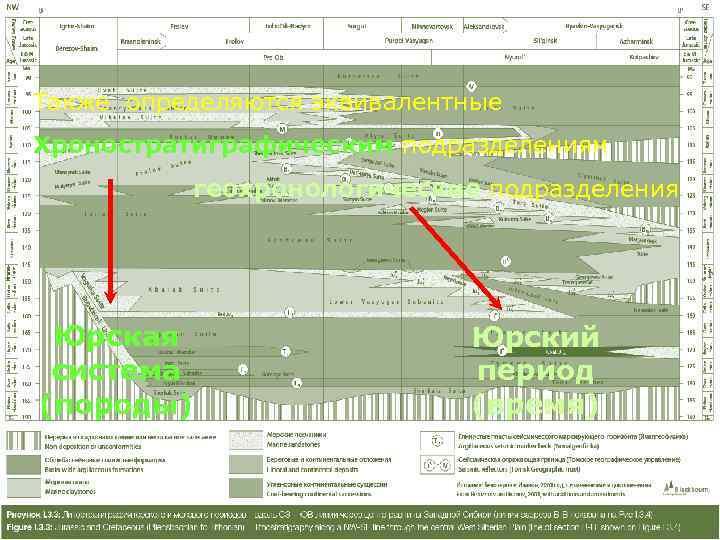 Также определяются эквивалентные Хроностратиграфическим подразделениям     геохронологические подразделения Юрская