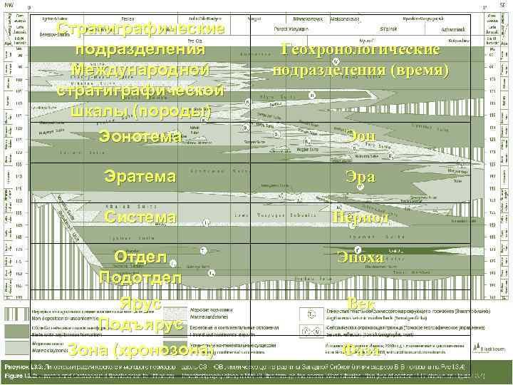 Стратиграфические  подразделения Геохронологические  Международной подразделения (время) стратиграфической шкалы (породы) Эонотема