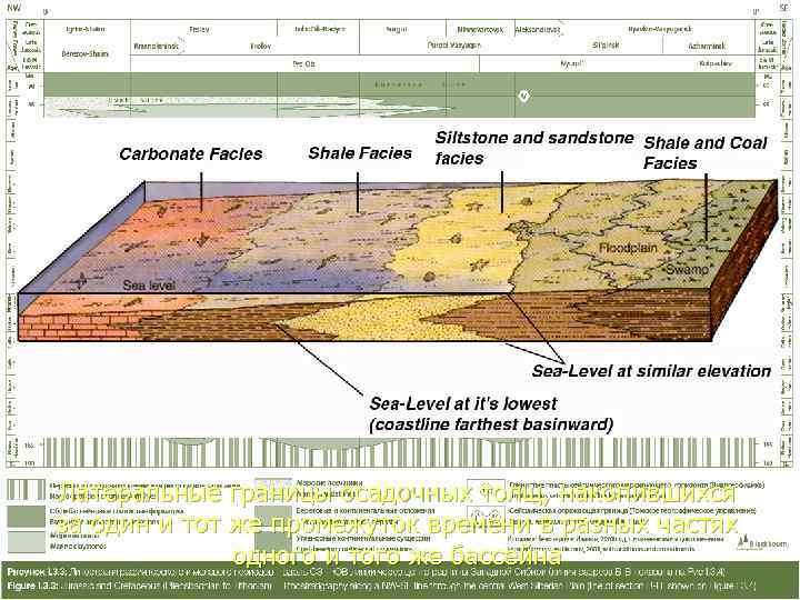 Латеральные границы осадочных толщ, накопившихся за один и тот же промежуток времени в разных