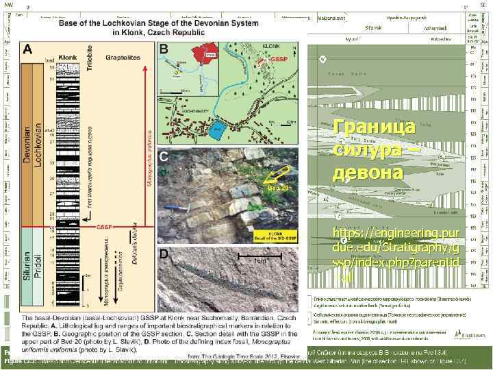 Граница силура – девона  https: //engineering. pur due. edu/Stratigraphy/g ssp/index. php? parentid =all