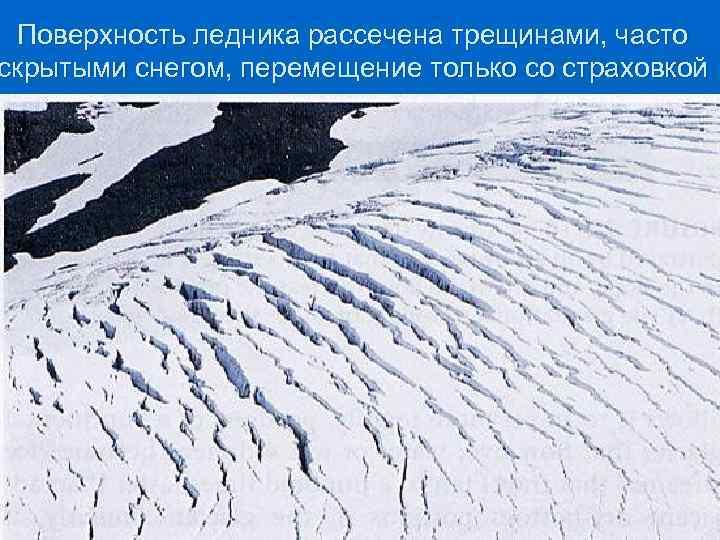 Поверхность ледника рассечена трещинами, часто скрытыми снегом, перемещение только со страховкой