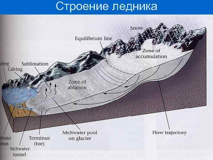 Строение ледника