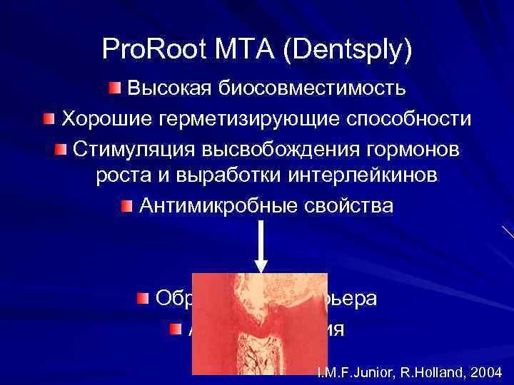 Pro. Root MTA (Dentsply)  Высокая биосовместимость Хорошие герметизирующие способности Стимуляция высвобождения