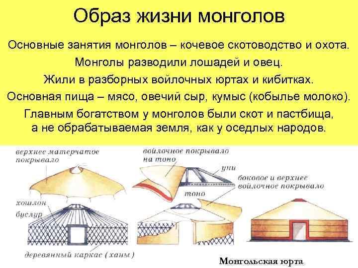 Образ жизни монголов Основные занятия монголов – кочевое скотоводство и охота.