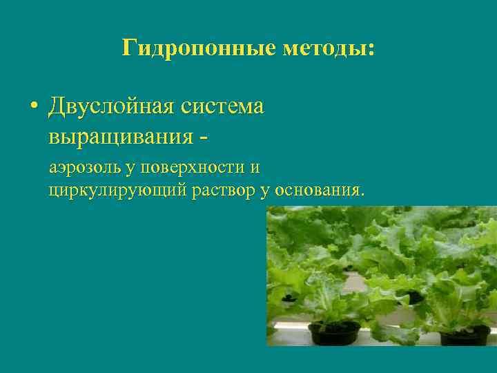 Гидропонные методы:  • Двуслойная система  выращивания - аэрозоль у