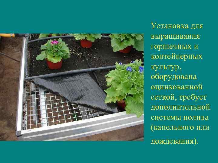 Установка для выращивания горшечных и контейнерных культур,  оборудована оцинкованной сеткой, требует дополнительной системы