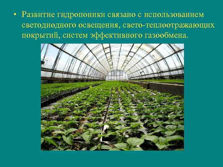 • Развитие гидропоники связано с использованием  светодиодного освещения, свето-теплоотражающих  покрытий, систем
