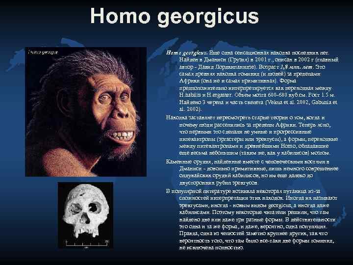 Homo georgicus  Homo georgicus. Еще одна сенсационная находка последних лет.   Найден