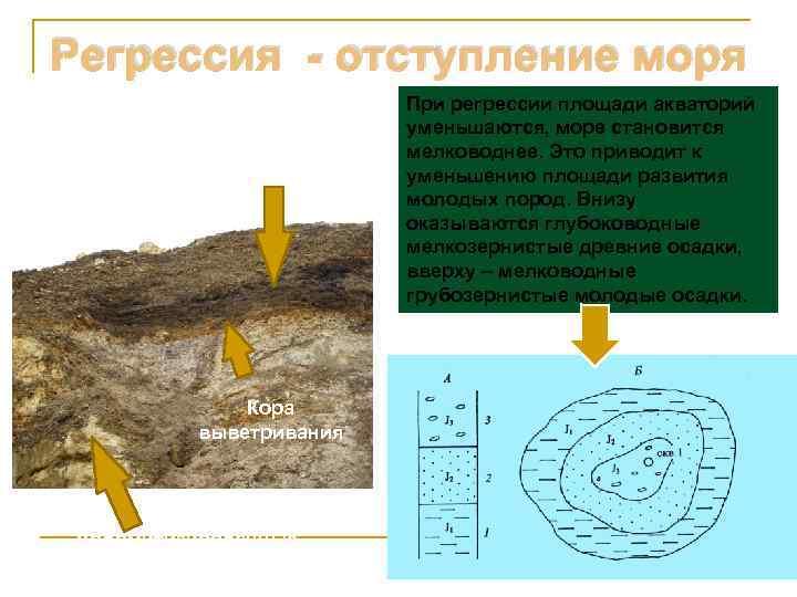 Регрессия - отступление моря      При регрессии площади акваторий
