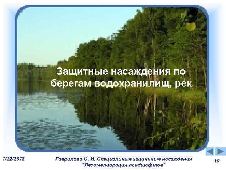Защитные насаждения по  берегам водохранилищ и рек   Защитные насаждения