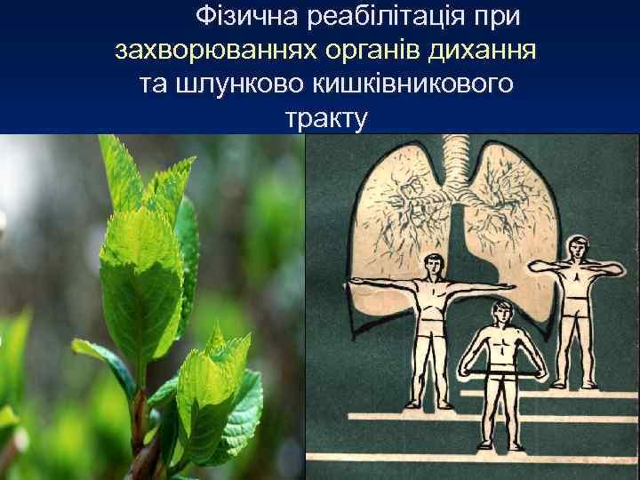 Фізична реабілітація при захворюваннях органів дихання  та шлунково кишківникового   тракту