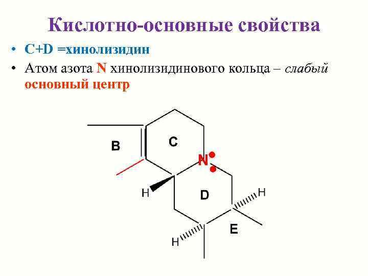 Кислотно-основные свойства • C+D =хинолизидин • Атом азота N хинолизидинового кольца – слабый