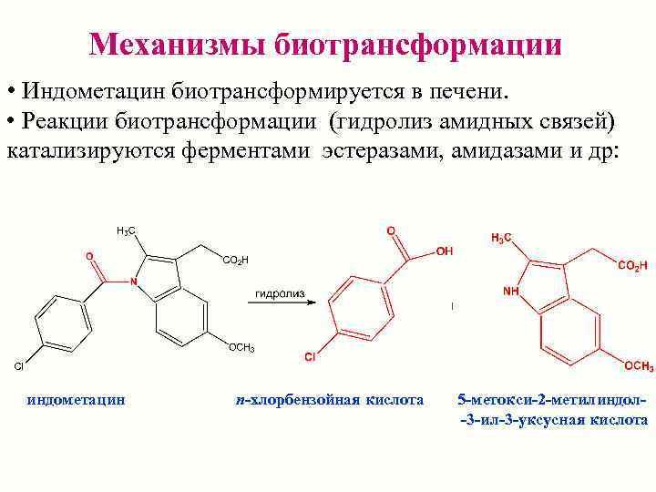 Механизмы биотрансформации • Индометацин биотрансформируется в печени.  • Реакции биотрансформации (гидролиз