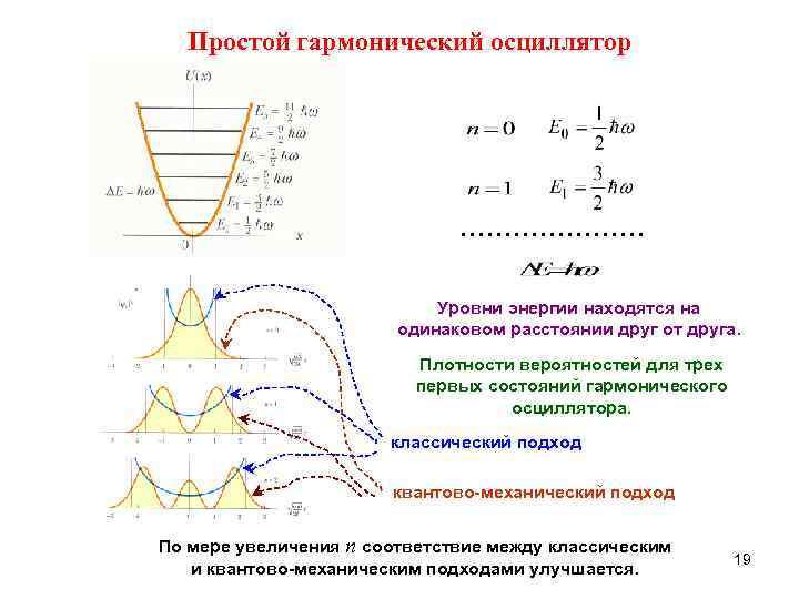 Простой гармонический осциллятор      …………………