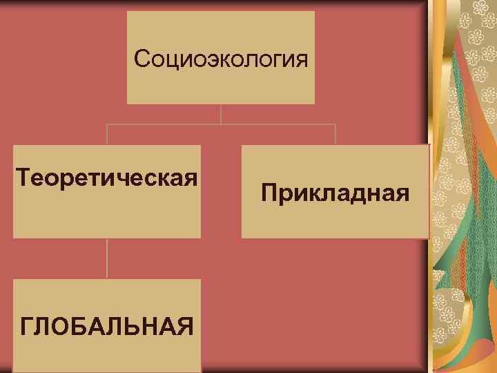 Социоэкология  Теоретическая   Прикладная ГЛОБАЛЬНАЯ