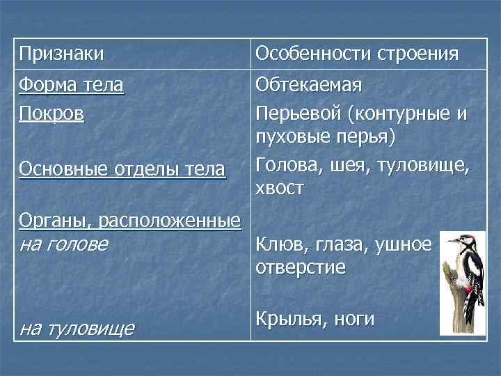 Признаки    Особенности строения Форма тела   Обтекаемая Покров