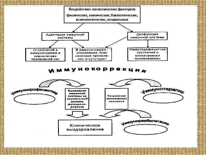 Воздействие экологических факторов: физических, химических, биологических, психологических, социальных