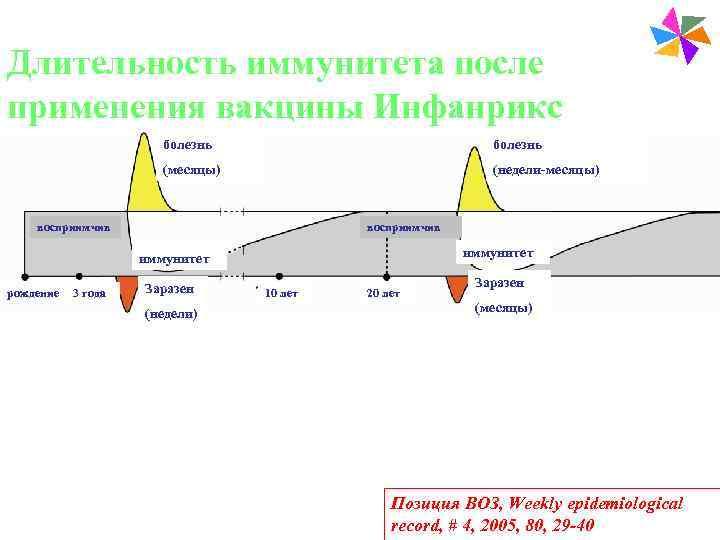 Paediatric Vaccines Длительность иммунитета после применения вакцины Инфанрикс