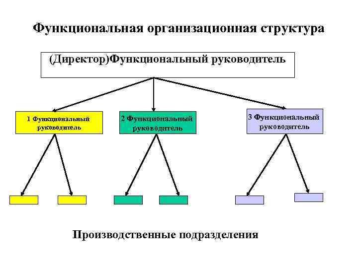 Функциональная организационная структура  (Директор)Функциональный руководитель  1 Функциональный  2 Функциональный