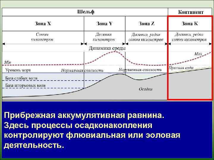 Прибрежная аккумулятивная равнина. Здесь процессы осадконакопления контролируют флювиальная или эоловая деятельность.
