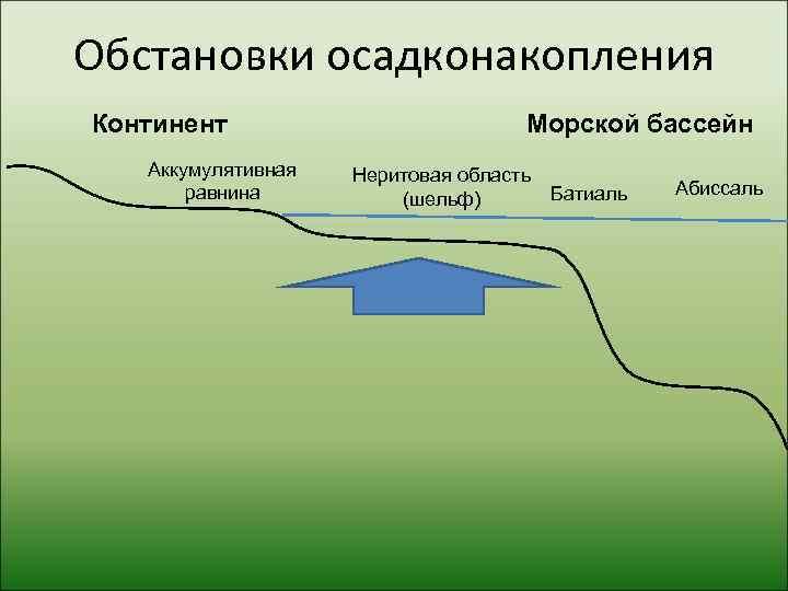 Обстановки осадконакопления Континент      Морской бассейн  Аккумулятивная  Неритовая