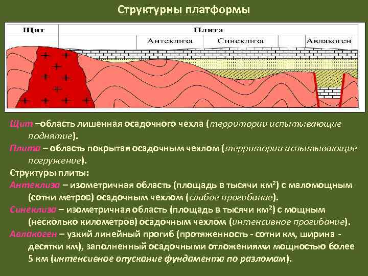 Структурны платформы Щит –область лишенная осадочного чехла (территории испытывающие