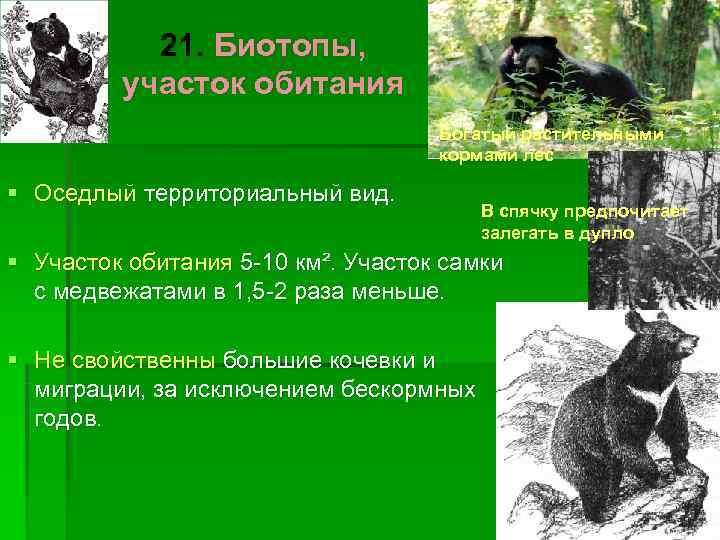 21. Биотопы,  участок обитания       Богатый