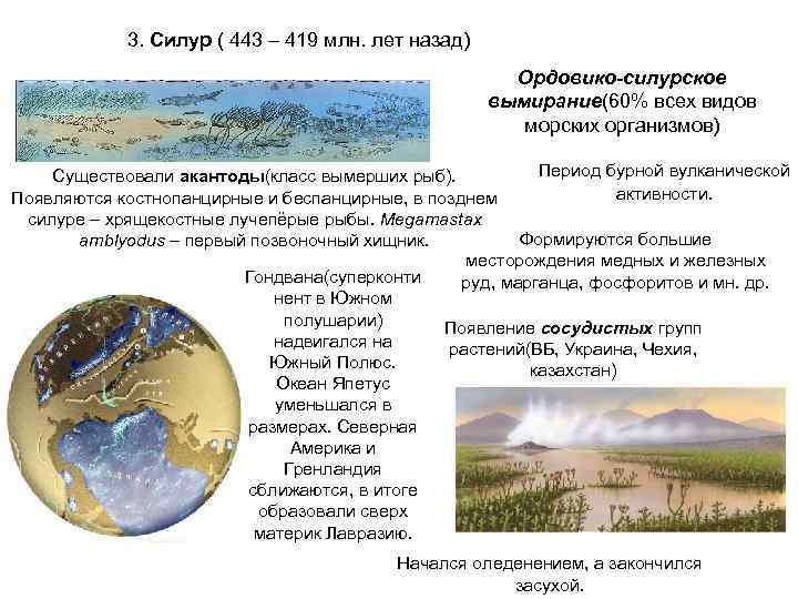 3. Силур ( 443 – 419 млн. лет назад)