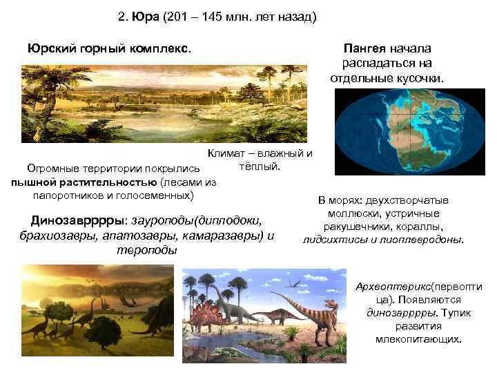 2. Юра (201 – 145 млн. лет назад)  Юрский горный