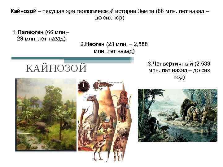 Кайнозой – текущая эра геологической истории Земли (66 млн. лет назад –