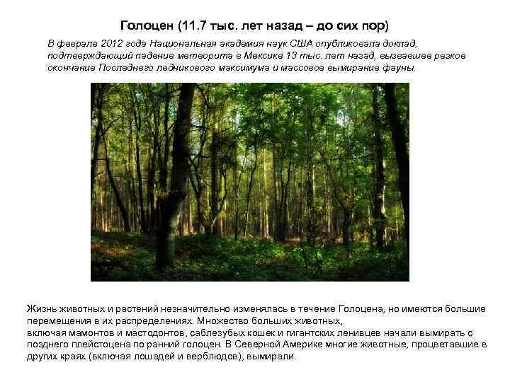 Голоцен (11. 7 тыс. лет назад – до сих пор)