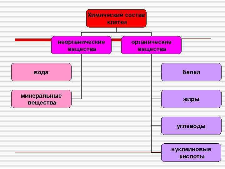 Химический состав    клетки   неорганические
