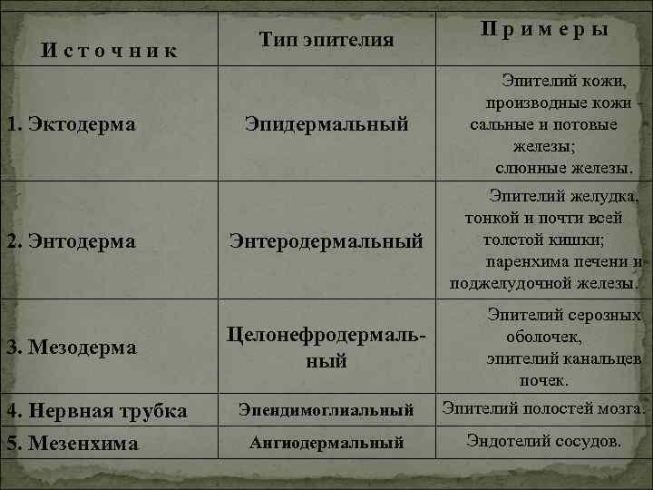 Примеры    Тип эпителия Источник