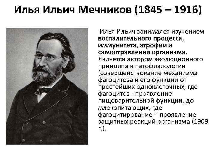Илья Ильич Мечников (1845 – 1916)    Илья Ильич занимался изучением