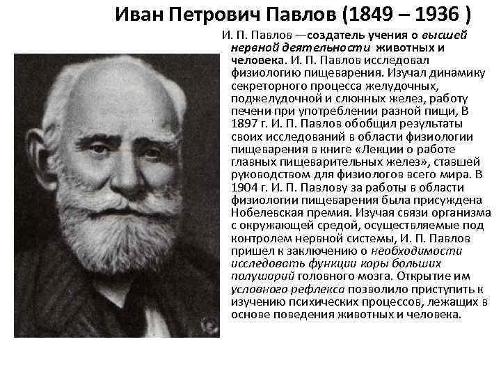 Иван Петрович Павлов (1849 – 1936 )    И. П. Павлов —создатель