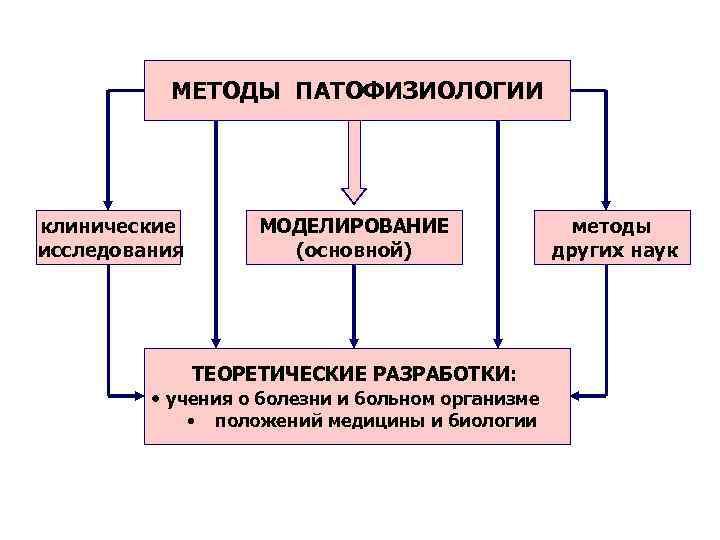 МЕТОДЫ ПАТОФИЗИОЛОГИИ клинические  МОДЕЛИРОВАНИЕ   методы исследования  (основной)