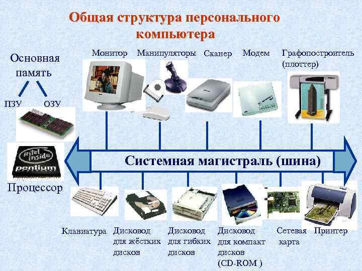 Общая структура персонального    компьютера    Монитор