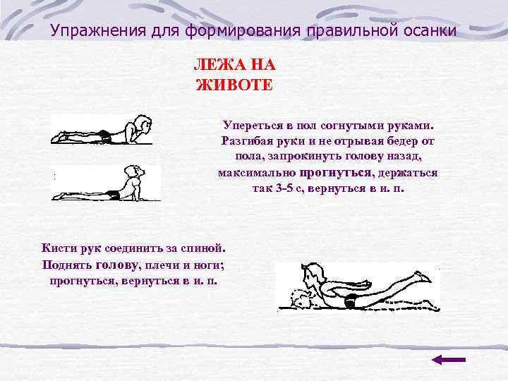 Упражнения для формирования правильной осанки     ЛЕЖА НА