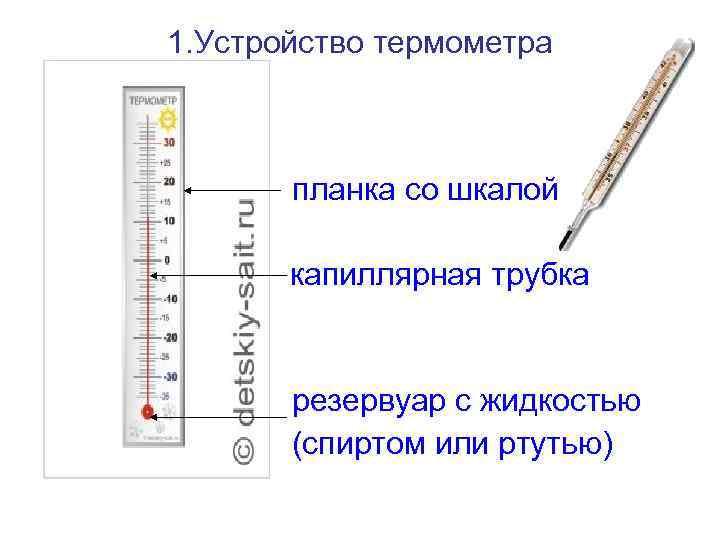 1. Устройство термометра  •  •    планка со