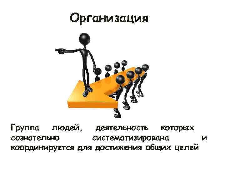 Организация Группа  людей, деятельность которых сознательно  систематизирована  и координируется