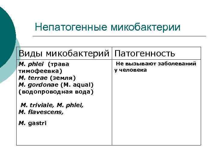 Непатогенные микобактерии Виды микобактерий Патогенность M. phlei (трава  Не вызывают заболеваний тимофеевка)