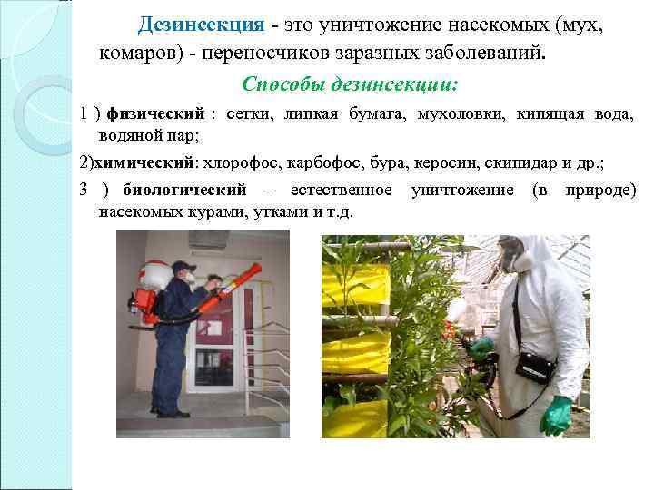 Дезинсекция - это уничтожение насекомых (мух, комаров) - переносчиков заразных заболеваний.