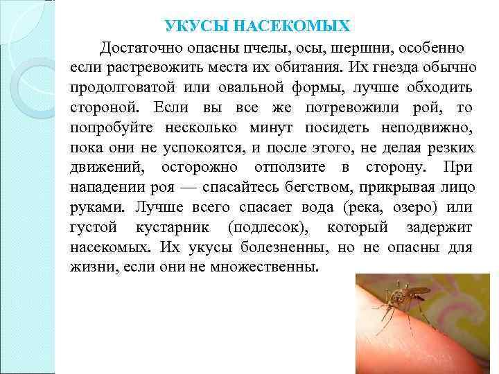 УКУСЫ НАСЕКОМЫХ Достаточно опасны пчелы, осы, шершни, особенно если растревожить места