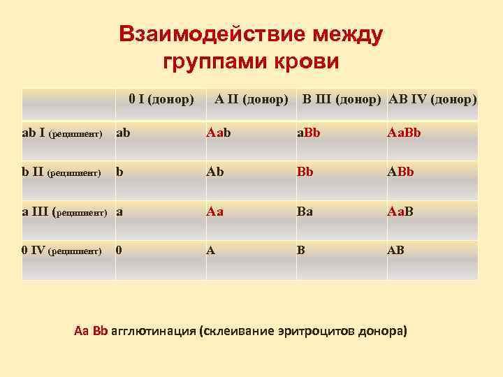 Взаимодействие между    группами крови