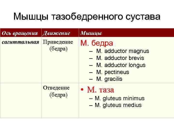 Мышцы тазобедренного сустава Ось вращения  Движение Мышцы сагиттальная  Приведение