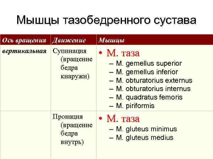 Мышцы тазобедренного сустава Ось вращения  Движение  Мышцы вертикальная  Супинация